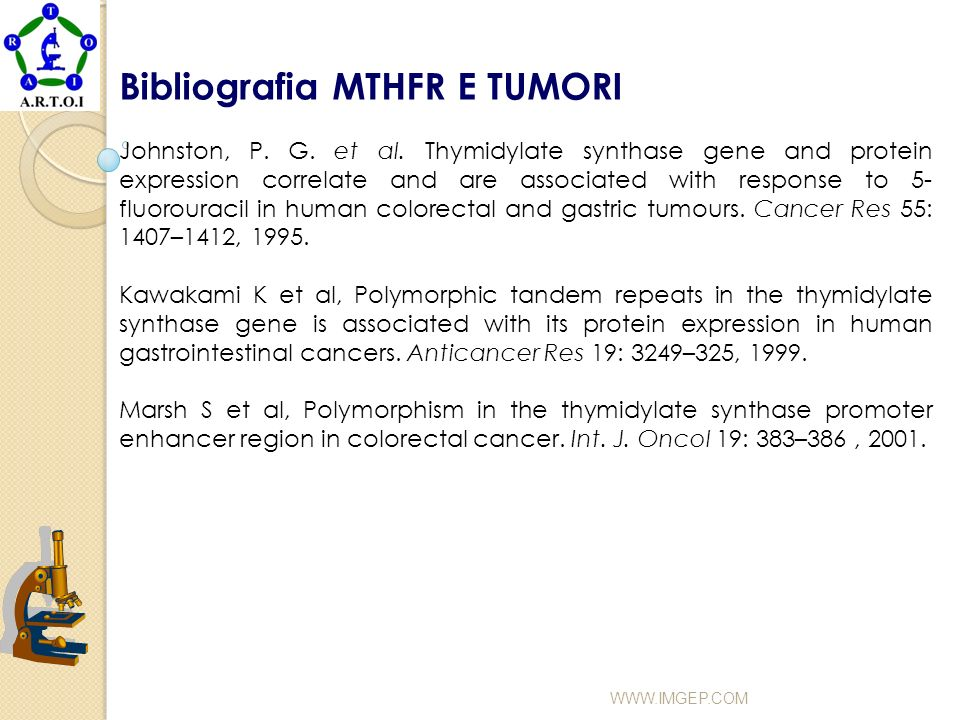 Bibliografia MTHFR E TUMORI
