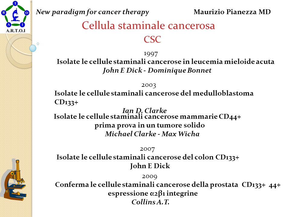 Cellula staminale cancerosa CSC