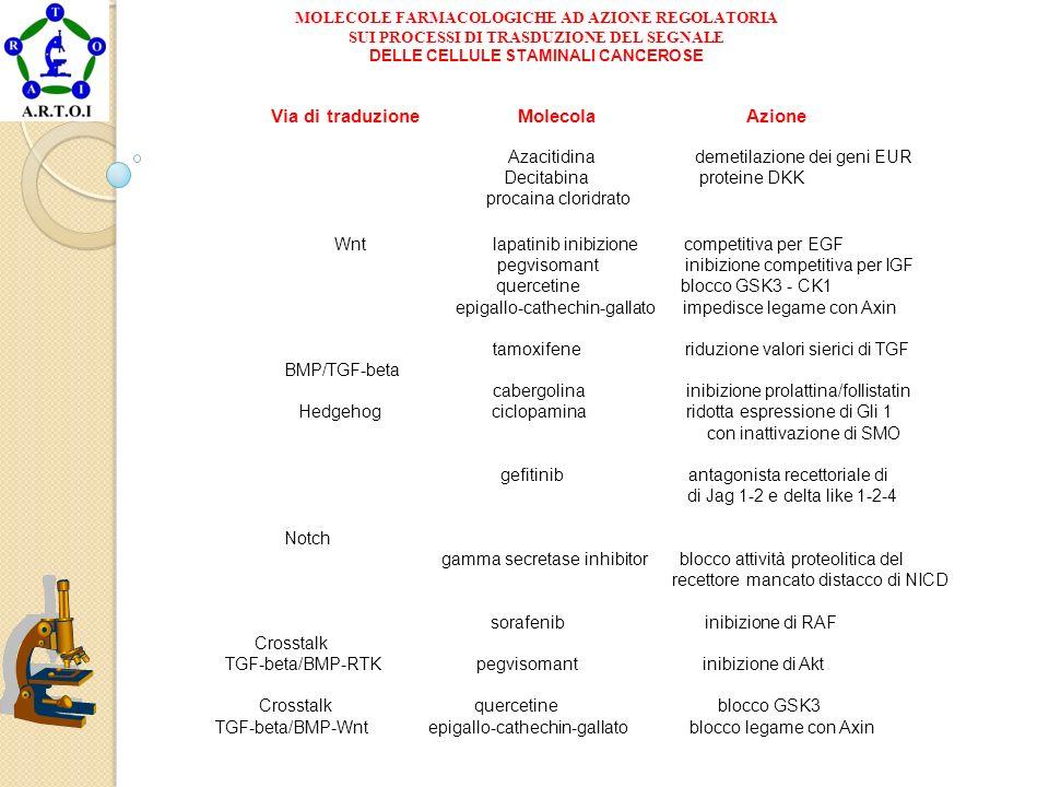 DELLE CELLULE STAMINALI CANCEROSE Via di traduzione Molecola Azione