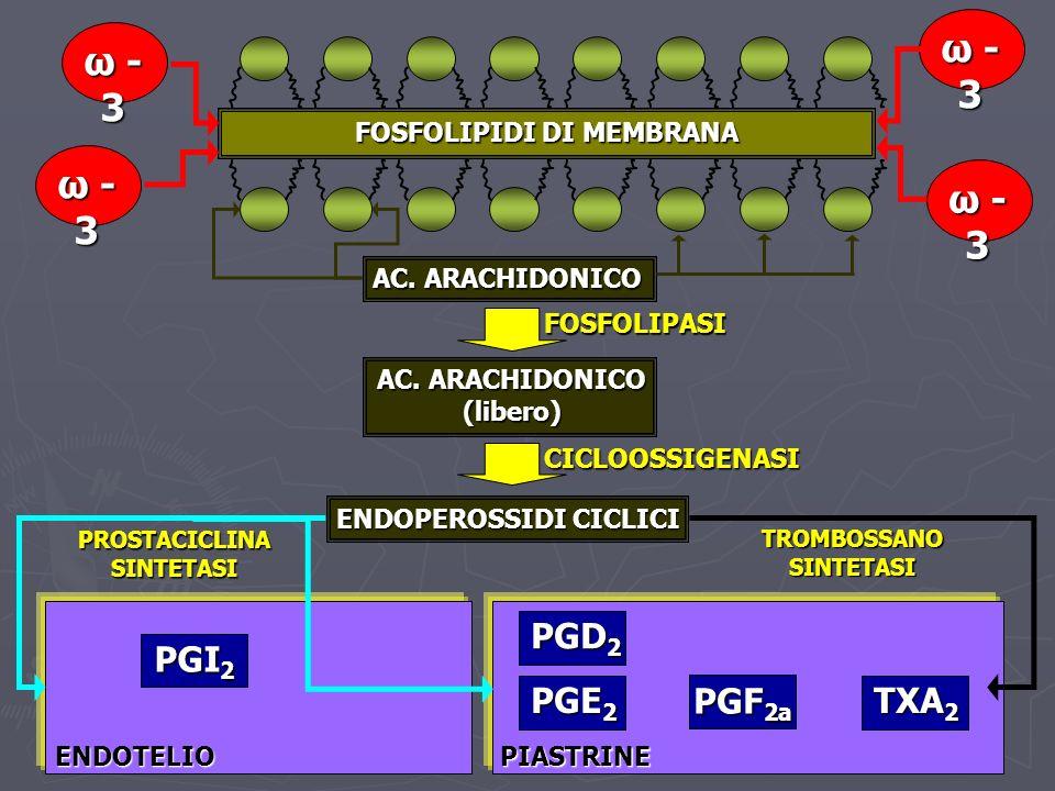 FOSFOLIPIDI DI MEMBRANA AC. ARACHIDONICO (libero)