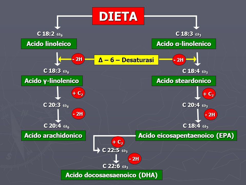 Acido eicosapentaenoico (EPA) Acido docosaesaenoico (DHA)