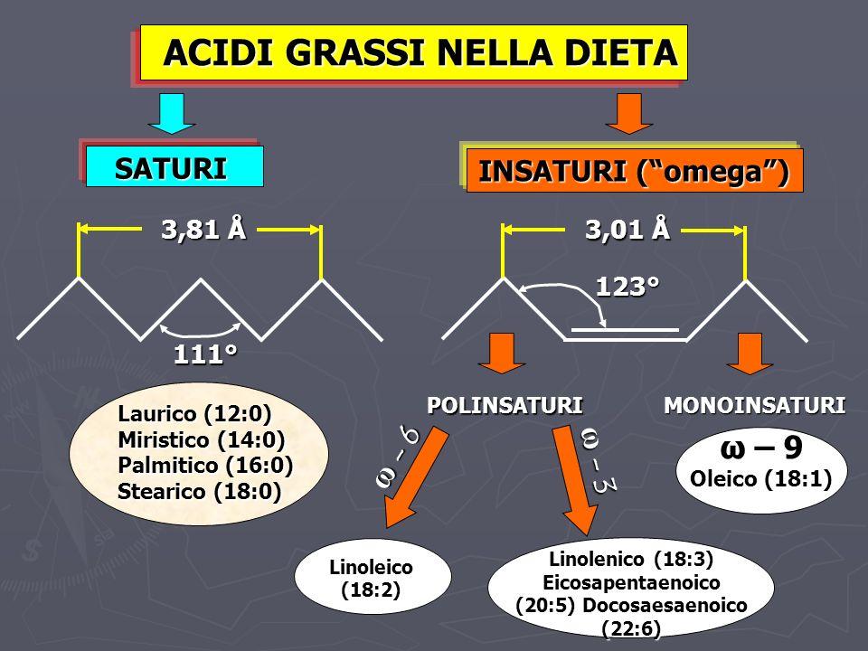 ACIDI GRASSI NELLA DIETA