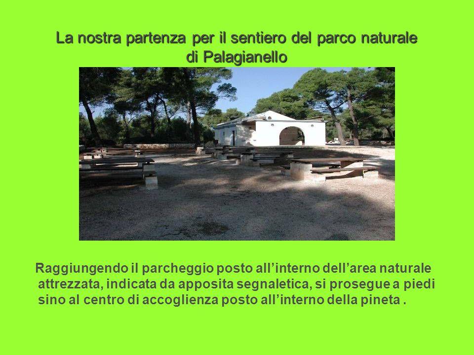 La nostra partenza per il sentiero del parco naturale di Palagianello