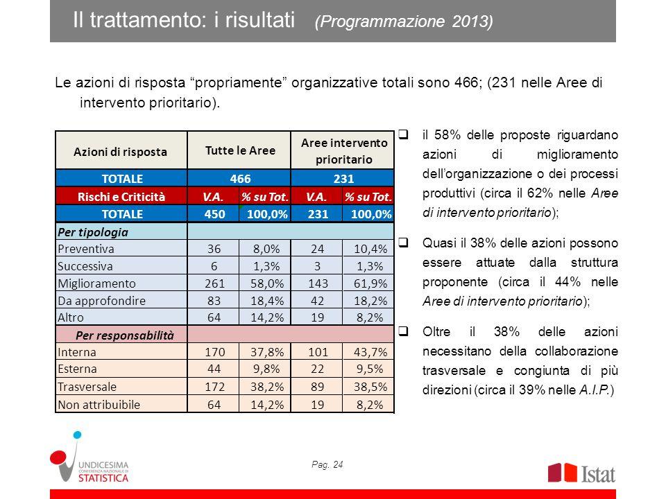 Il trattamento: i risultati (Programmazione 2013)