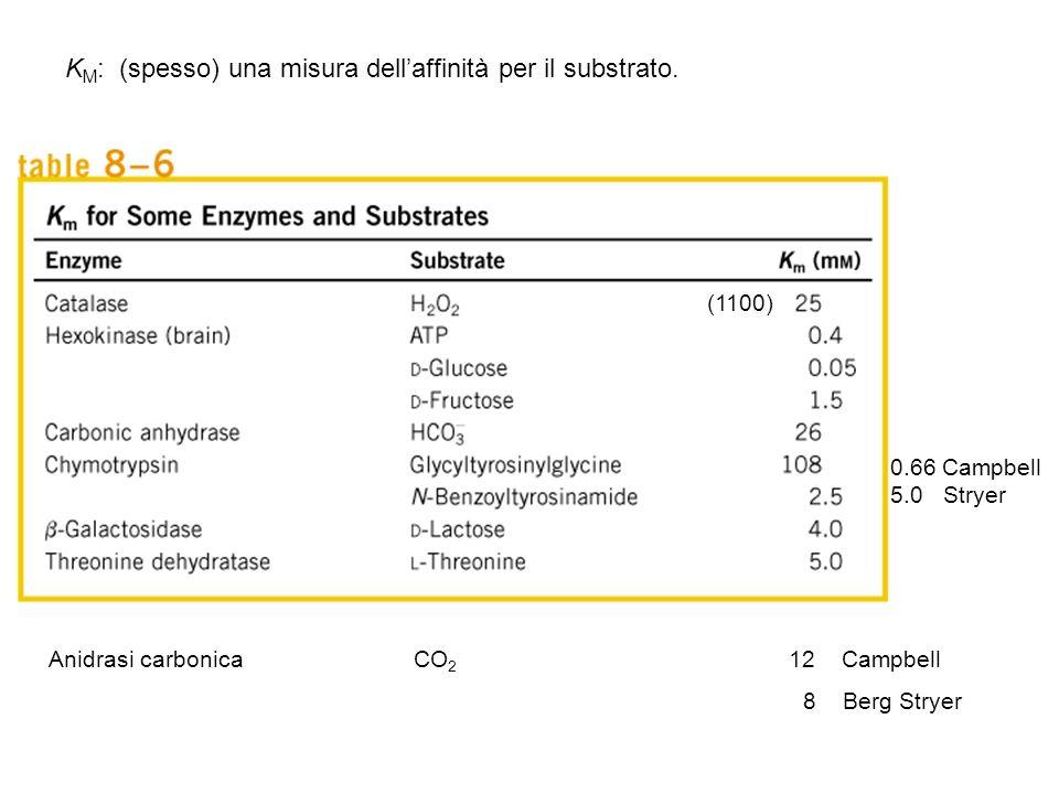 KM: (spesso) una misura dell'affinità per il substrato.