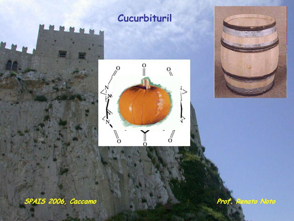 Cucurbituril SPAIS 2006, Caccamo Prof. Renato Noto