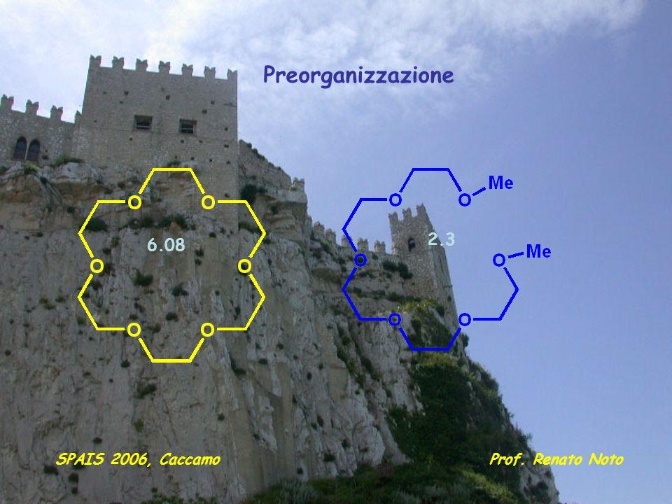Preorganizzazione 2.3 6.08 SPAIS 2006, Caccamo Prof. Renato Noto