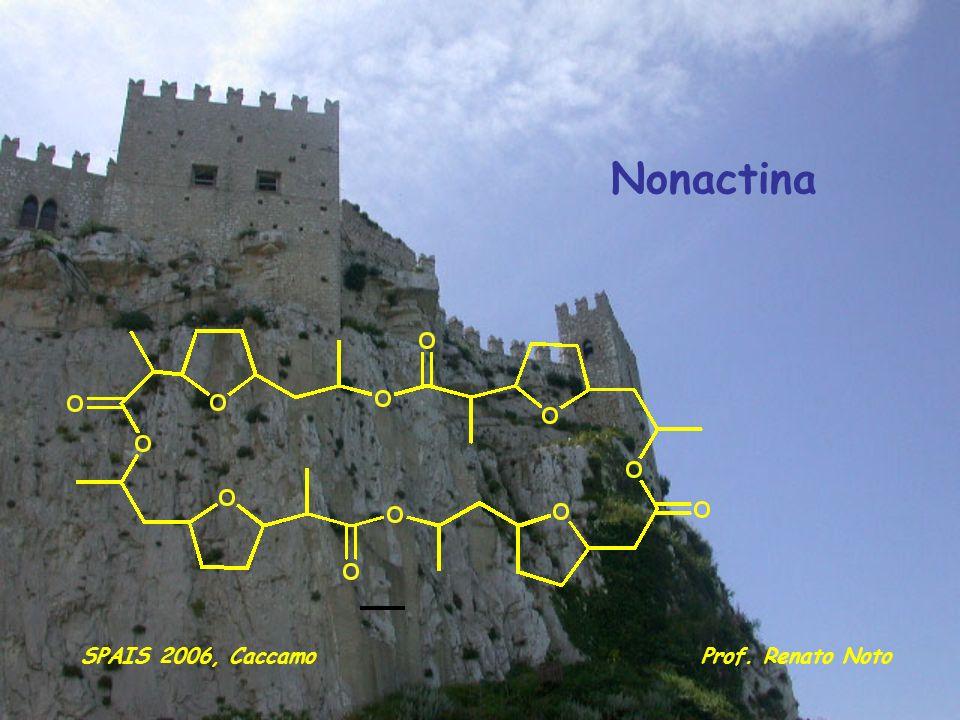 Nonactina SPAIS 2006, Caccamo Prof. Renato Noto