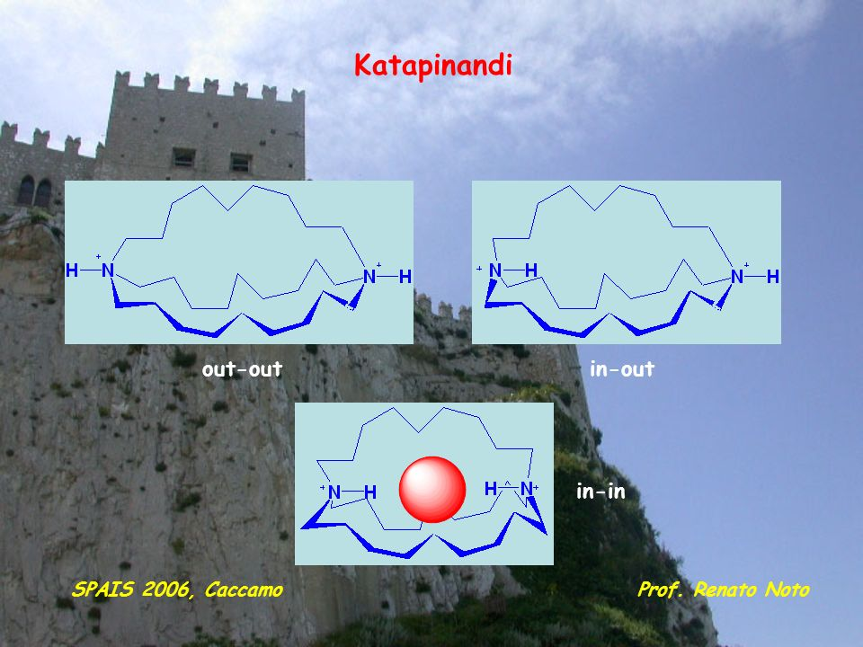 Katapinandi out-out in-out in-in SPAIS 2006, Caccamo Prof. Renato Noto