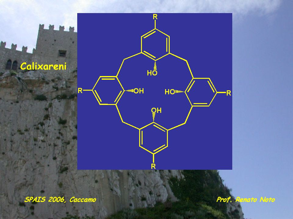 Calixareni SPAIS 2006, Caccamo Prof. Renato Noto