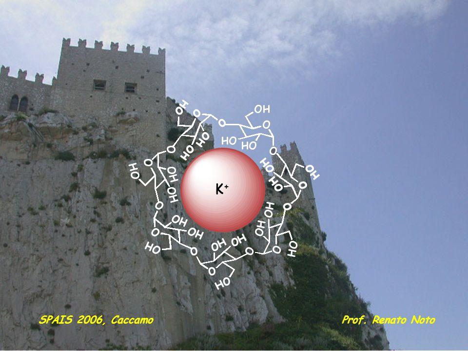 K+ SPAIS 2006, Caccamo Prof. Renato Noto