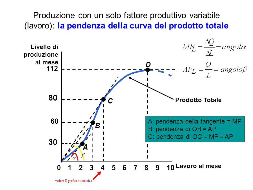 Produzione con un solo fattore produttivo variabile (lavoro): la pendenza della curva del prodotto totale