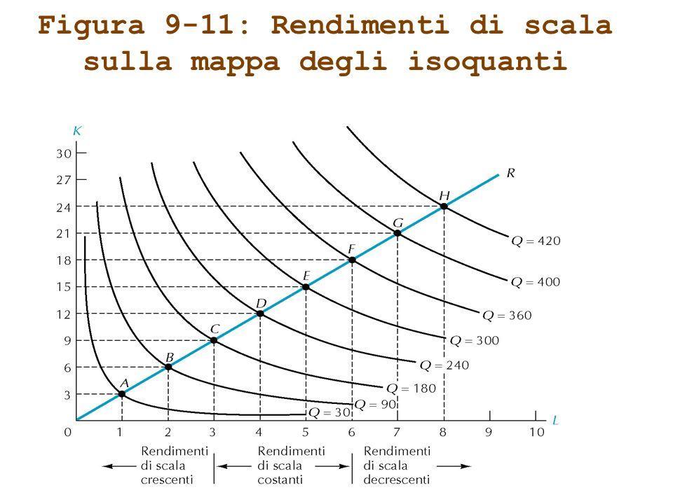 Figura 9-11: Rendimenti di scala sulla mappa degli isoquanti