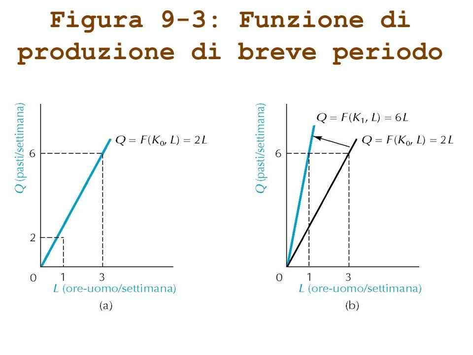 Figura 9-3: Funzione di produzione di breve periodo