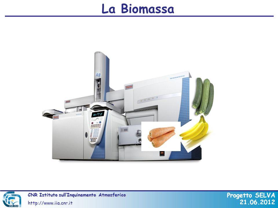La Biomassa 17/02/09