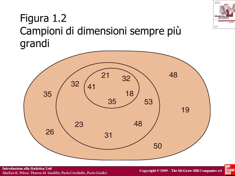 Figura 1.2 Campioni di dimensioni sempre più grandi
