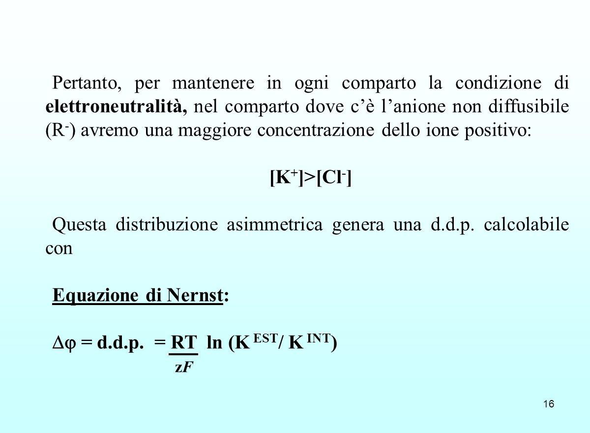 Pertanto, per mantenere in ogni comparto la condizione di elettroneutralità, nel comparto dove c'è l'anione non diffusibile (R-) avremo una maggiore concentrazione dello ione positivo: