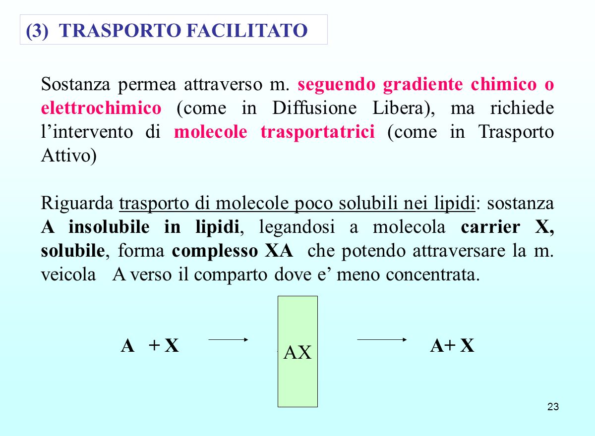 (3) TRASPORTO FACILITATO