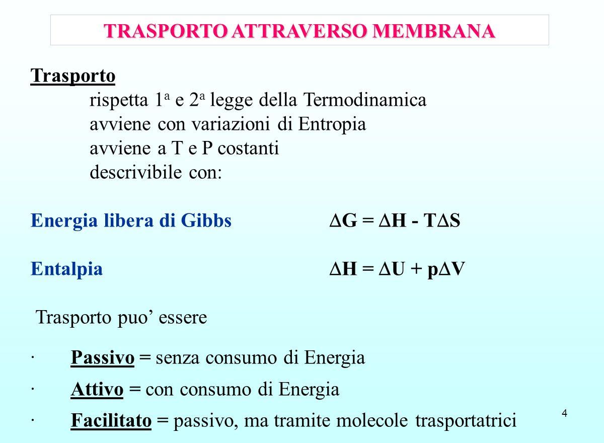 TRASPORTO ATTRAVERSO MEMBRANA
