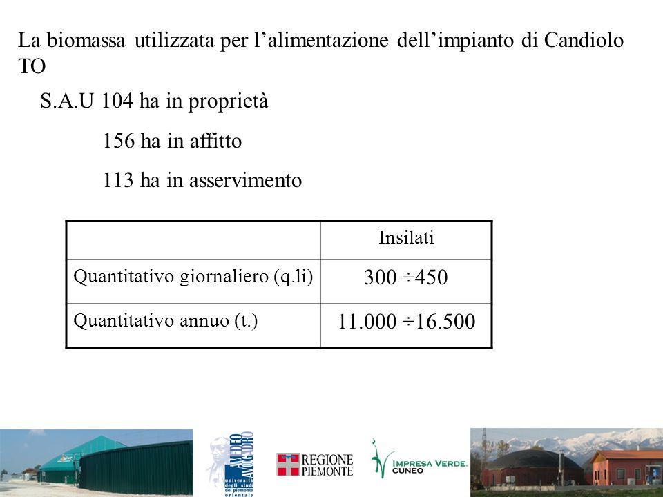 La biomassa utilizzata per l'alimentazione dell'impianto di Candiolo TO