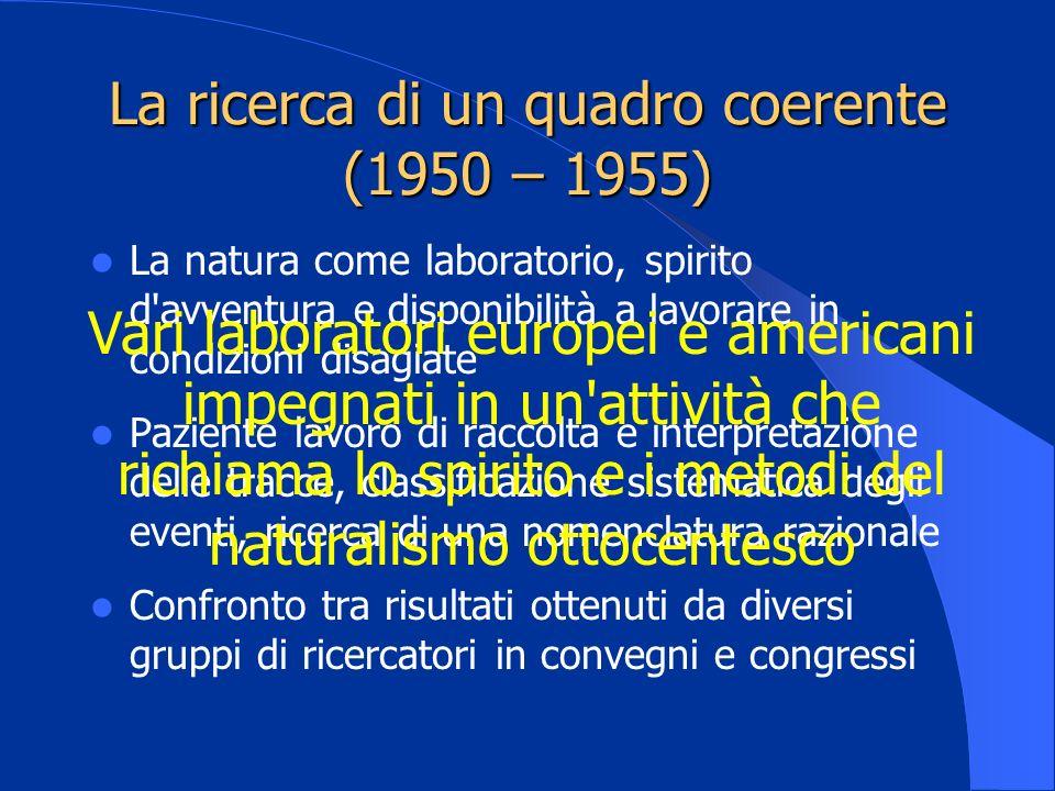 La ricerca di un quadro coerente (1950 – 1955)