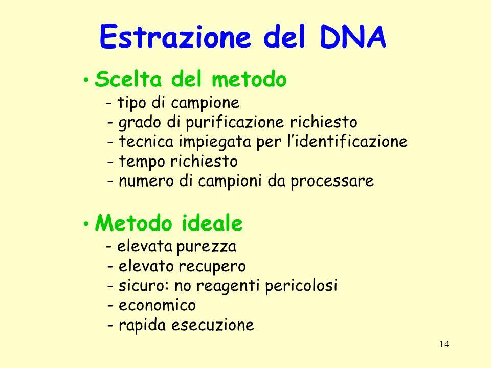 Estrazione del DNA Scelta del metodo Metodo ideale - tipo di campione