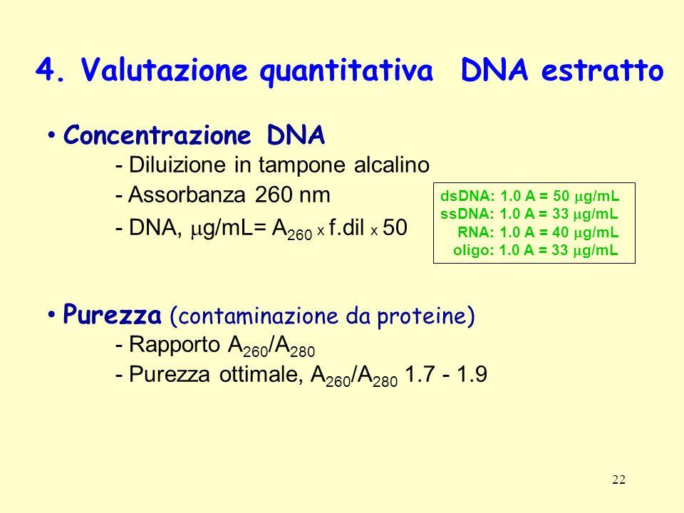 4. Valutazione quantitativa DNA estratto