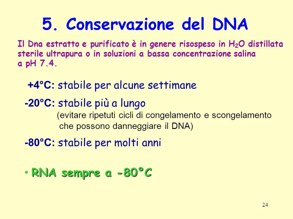 5. Conservazione del DNA RNA sempre a -80°C