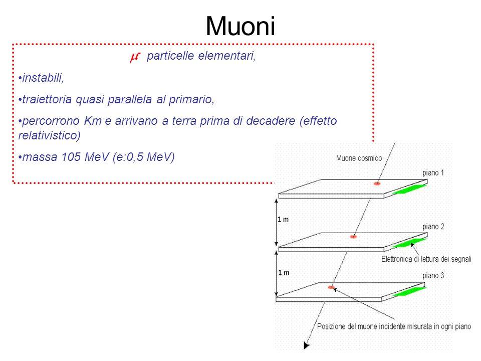 m- particelle elementari,