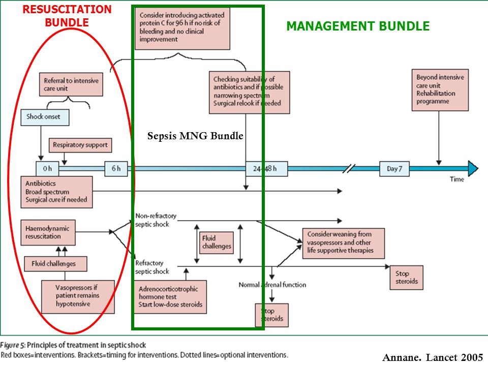 MANAGEMENT BUNDLE RESUSCITATION BUNDLE Sepsis MNG Bundle