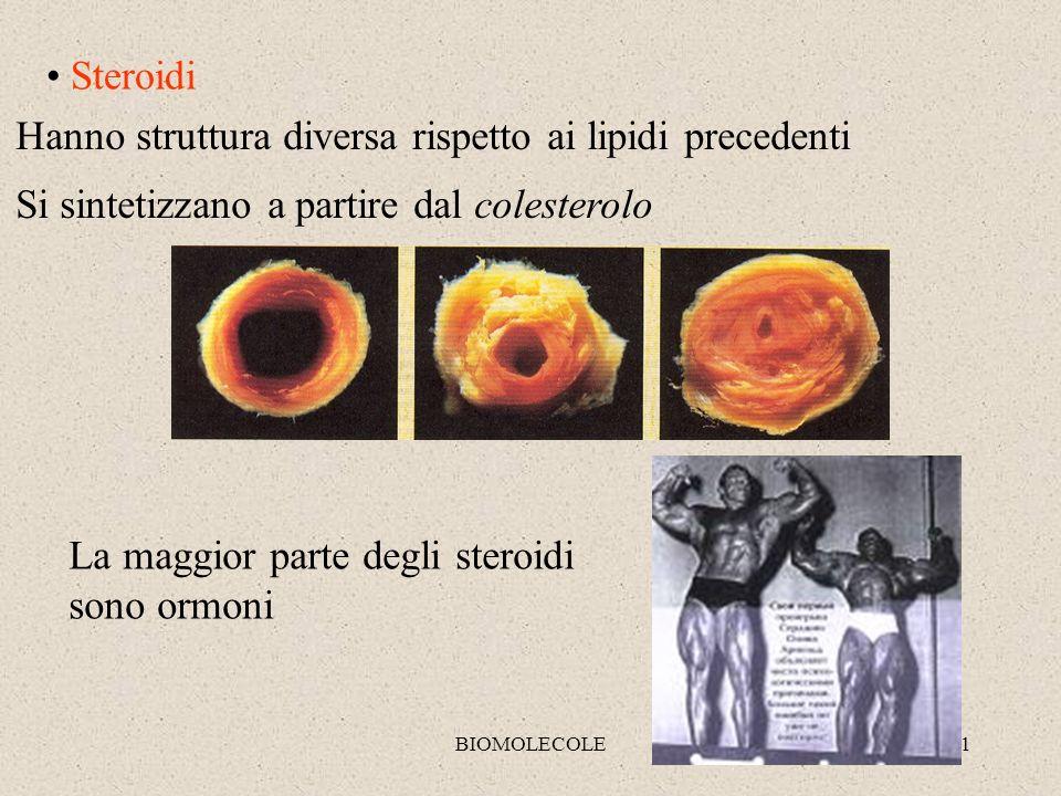 Hanno struttura diversa rispetto ai lipidi precedenti