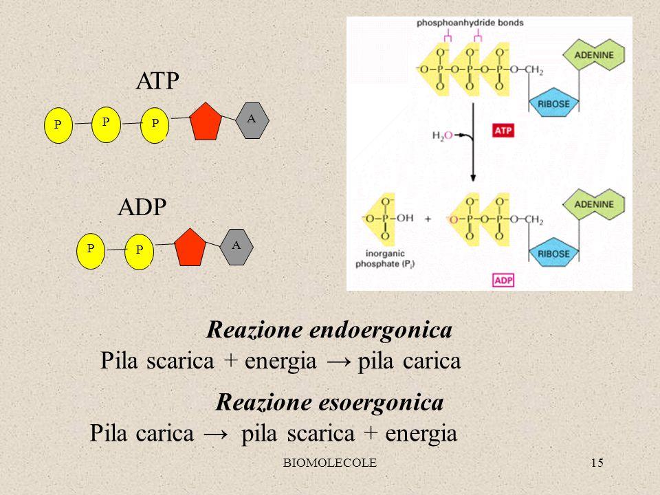 Reazione endoergonica