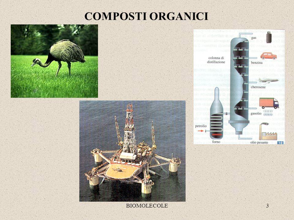 COMPOSTI ORGANICI BIOMOLECOLE