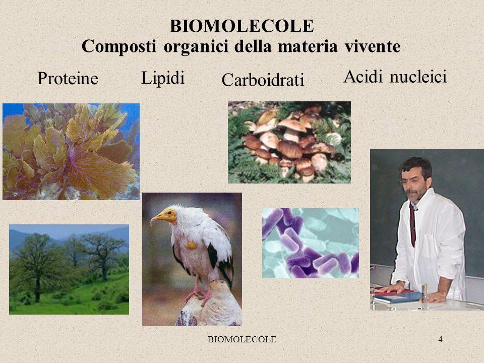 Composti organici della materia vivente