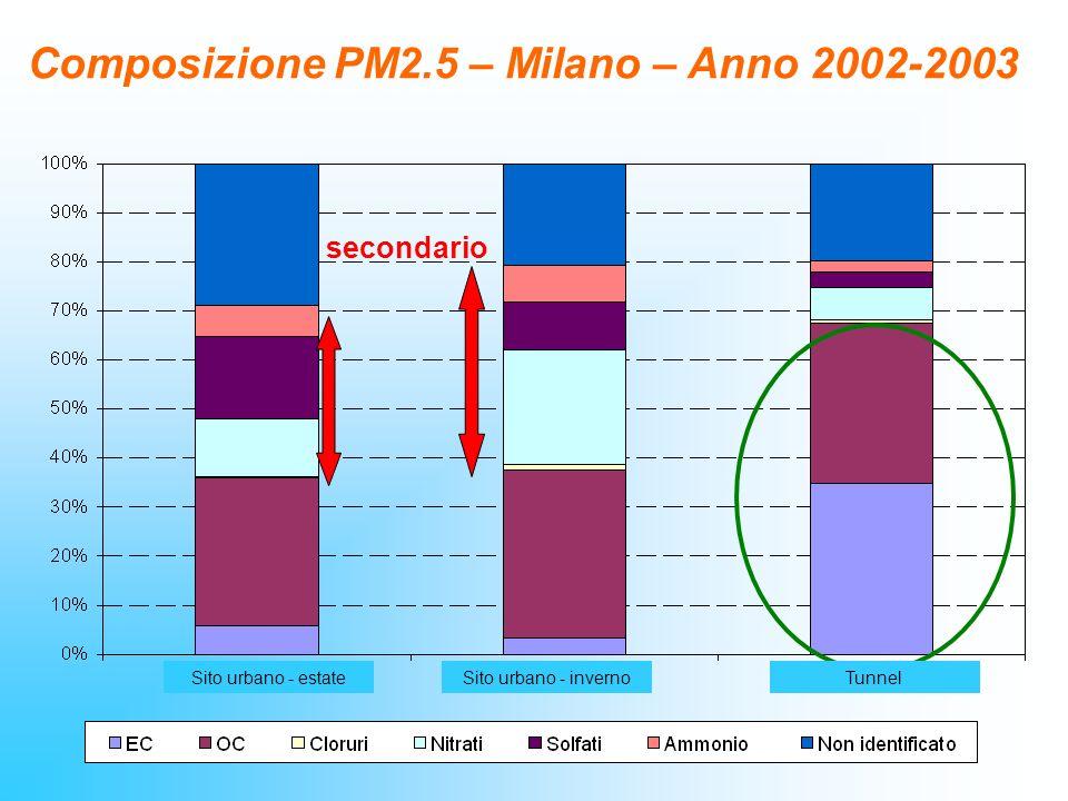 Composizione PM2.5 – Milano – Anno 2002-2003