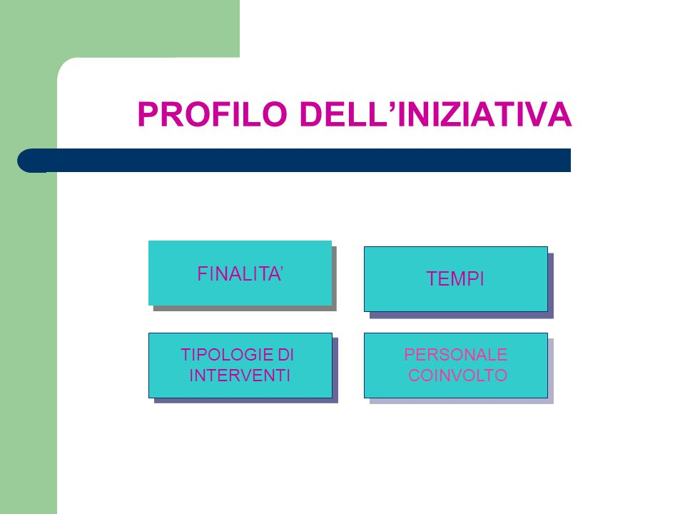 PROFILO DELL'INIZIATIVA