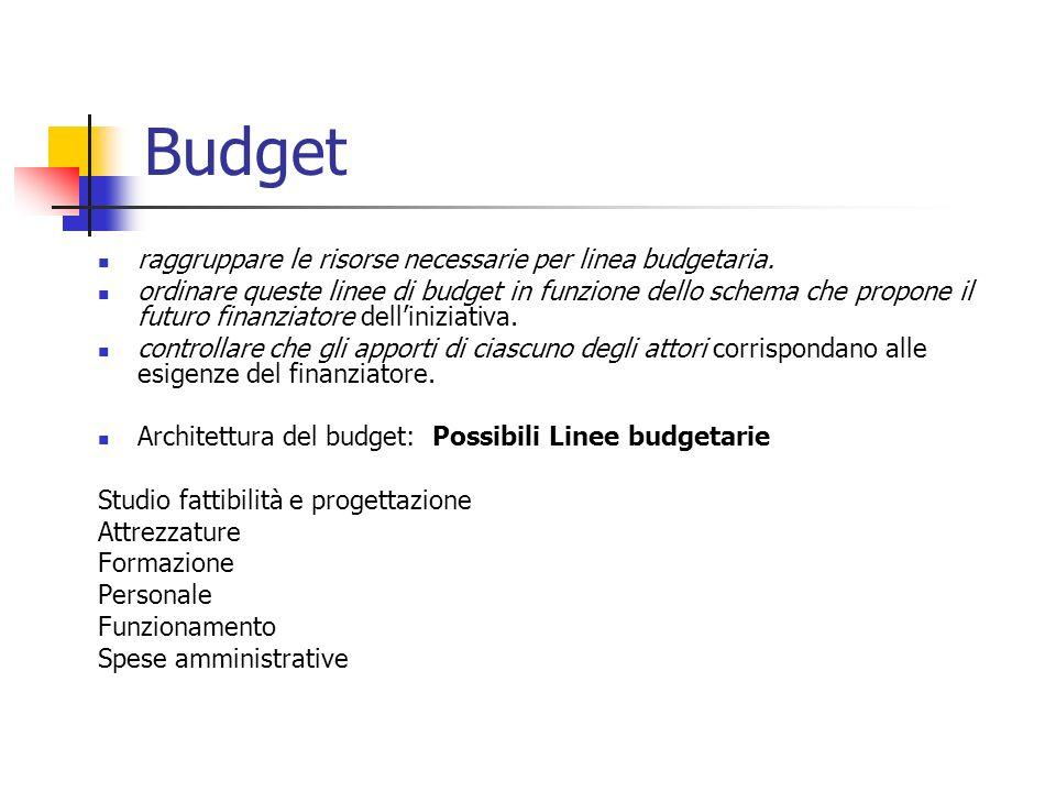 Budget raggruppare le risorse necessarie per linea budgetaria.