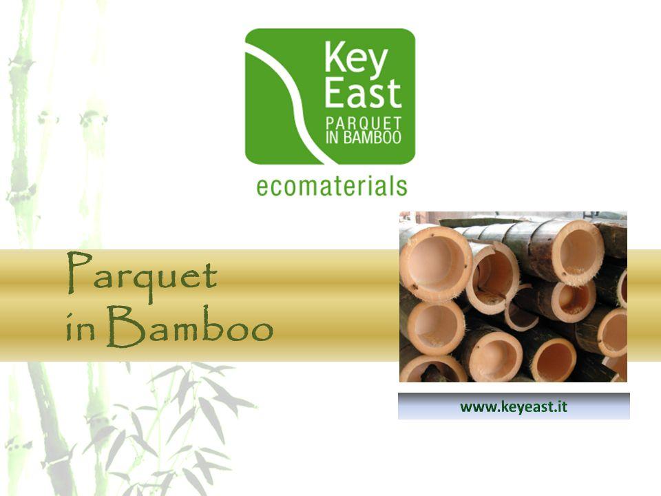 Parquet in Bamboo www.keyeast.it