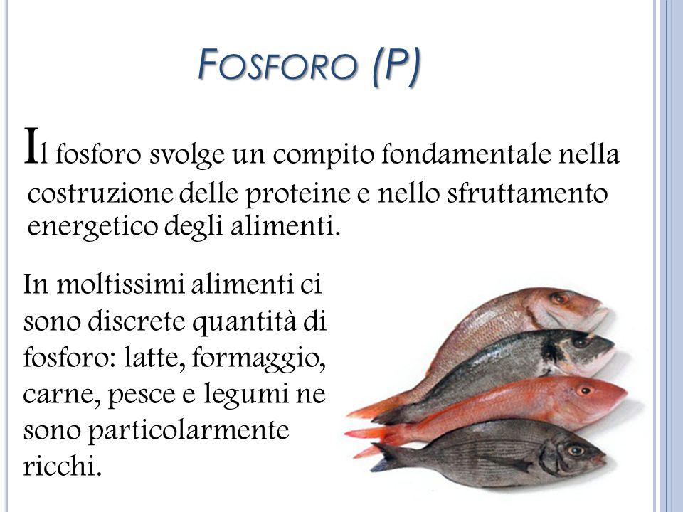 Fosforo (P)Il fosforo svolge un compito fondamentale nella costruzione delle proteine e nello sfruttamento energetico degli alimenti.