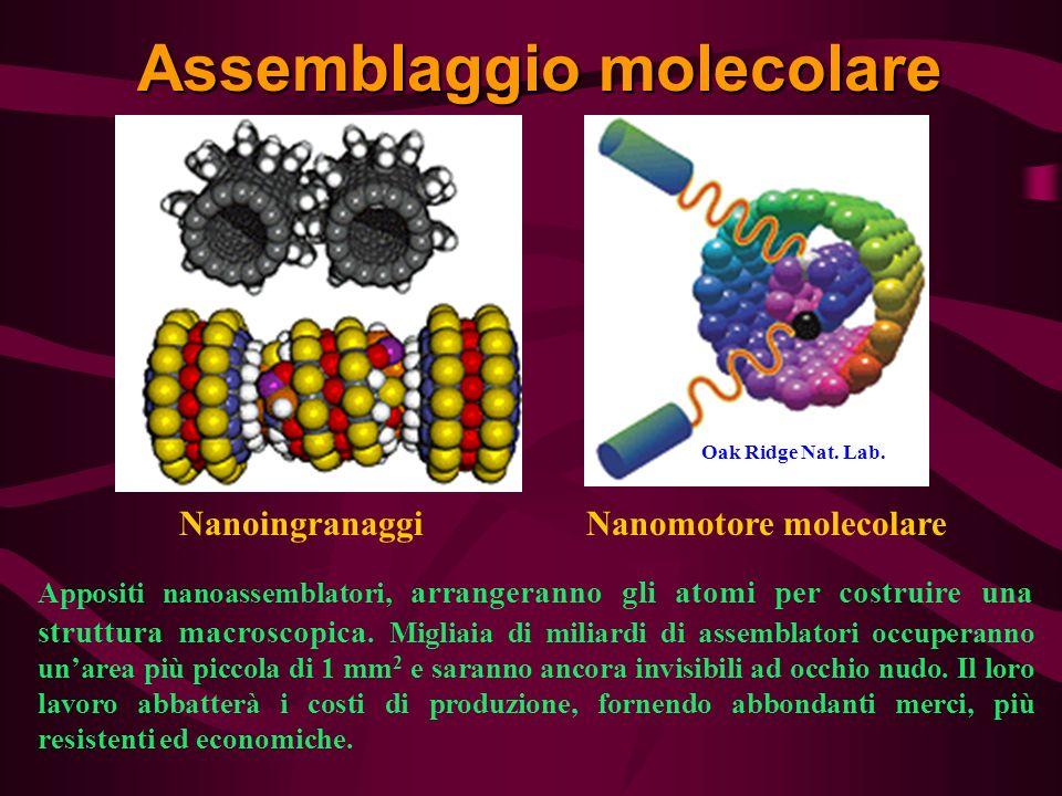 Assemblaggio molecolare