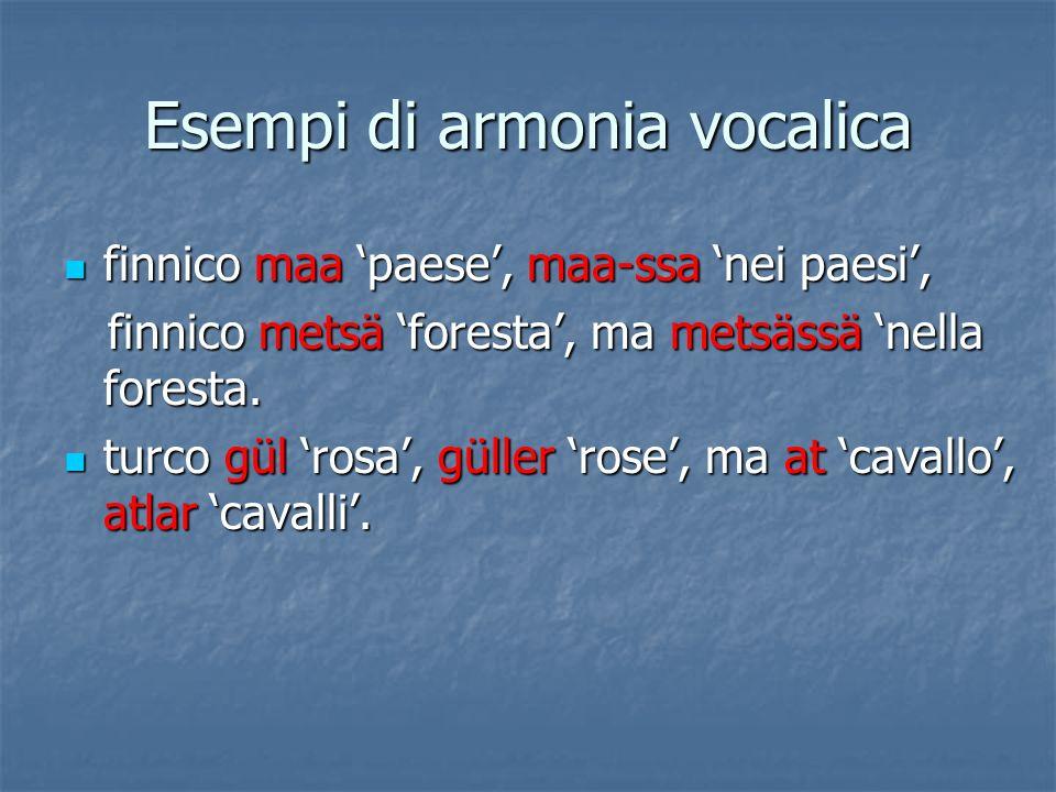Esempi di armonia vocalica