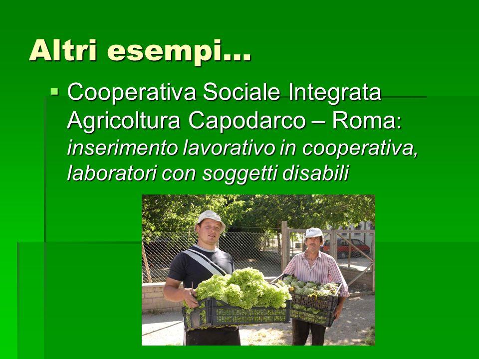 Altri esempi… Cooperativa Sociale Integrata Agricoltura Capodarco – Roma: inserimento lavorativo in cooperativa, laboratori con soggetti disabili.