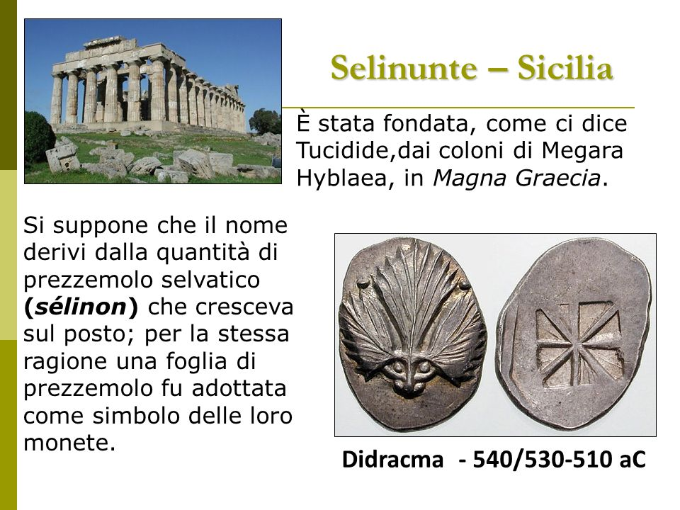 Selinunte – Sicilia Didracma - 540/530-510 aC