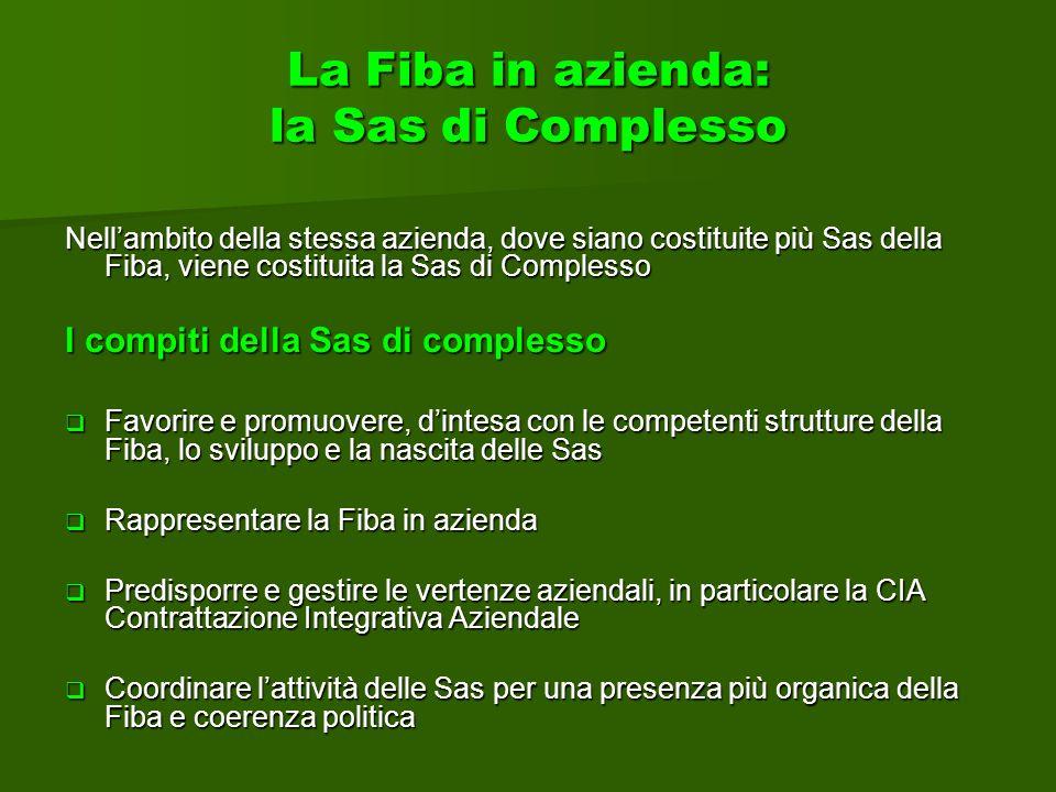 La Fiba in azienda: la Sas di Complesso