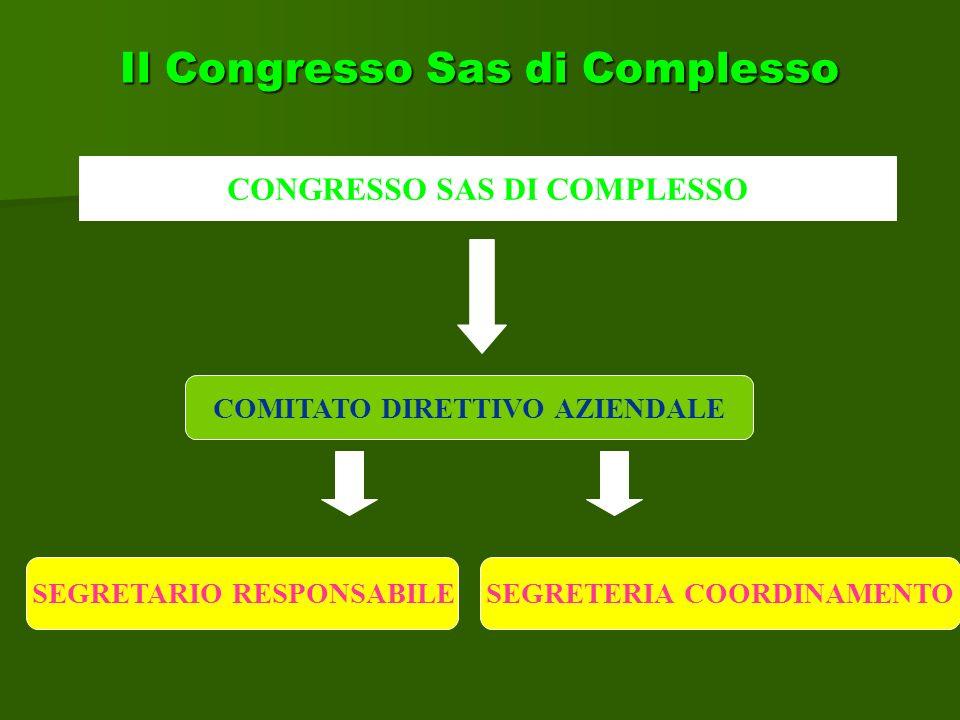 Il Congresso Sas di Complesso