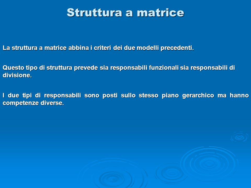 Struttura a matrice La struttura a matrice abbina i criteri dei due modelli precedenti.