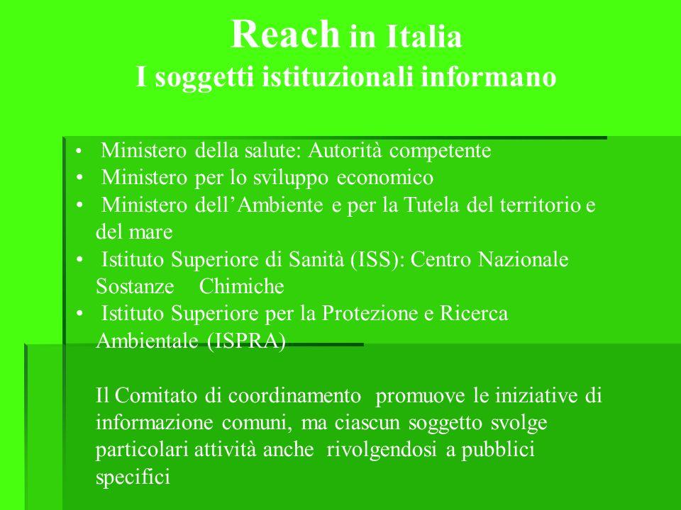 Reach in Italia I soggetti istituzionali informano