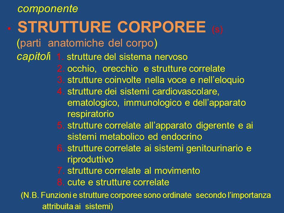 STRUTTURE CORPOREE (s) (parti anatomiche del corpo)