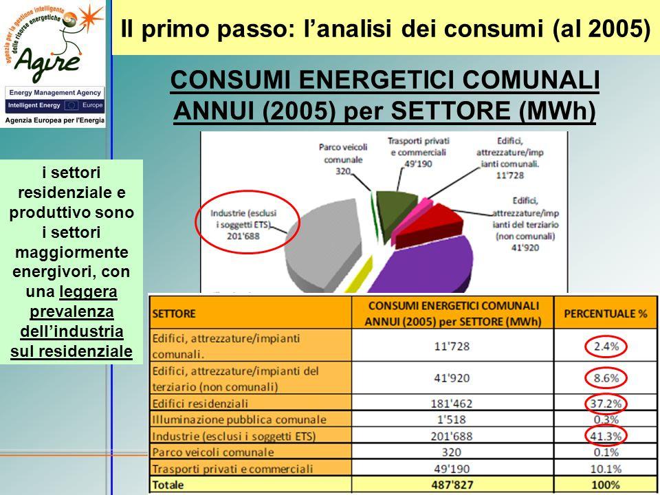 Il primo passo: l'analisi dei consumi (al 2005)