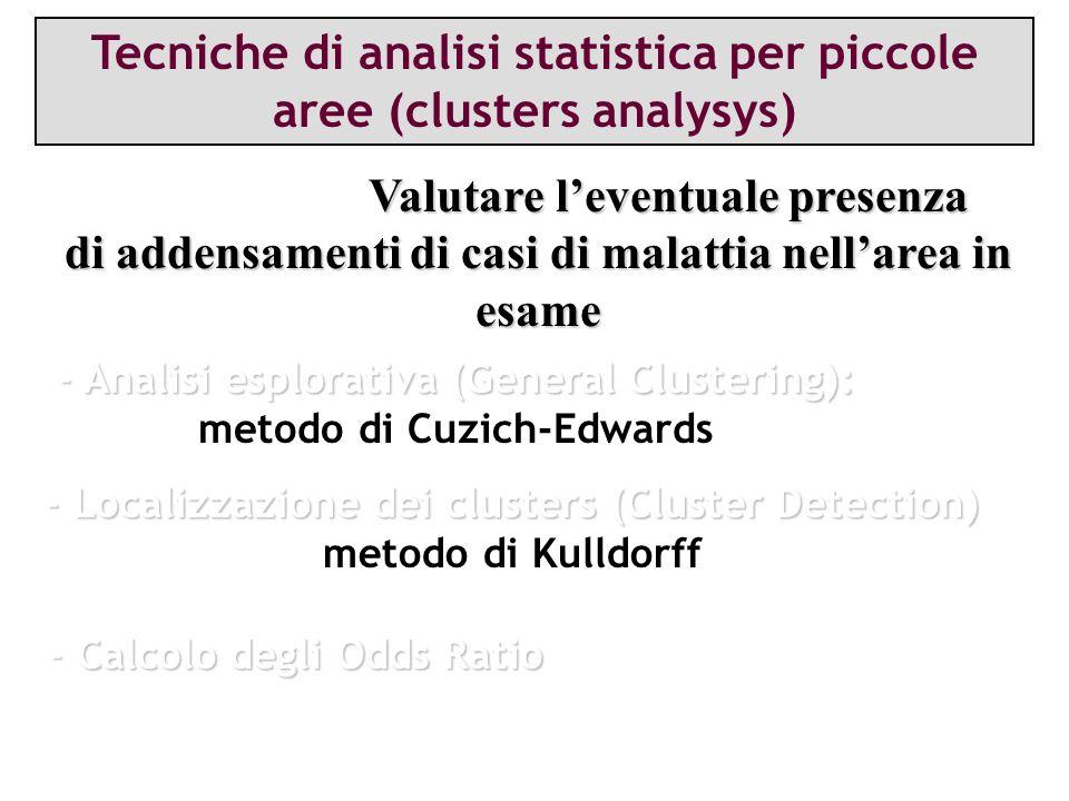 Tecniche di analisi statistica per piccole aree (clusters analysys)